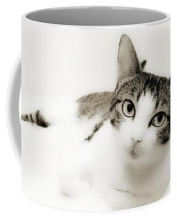 Dreamy Cat 2 Coffee Mug