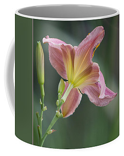 Coffee Mug featuring the photograph Dreamy Daylily by Patti Deters