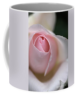 Coffee Mug featuring the photograph Dreamy Rose by Joy Watson
