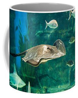 Drifting Through Life Coffee Mug