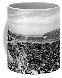 Coffee Mug featuring the photograph Driftwood And Harbor by Jemmy Archer