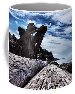 Driftwood In Teddy Bear Cover Coffee Mug