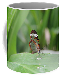 Drinking Water Coffee Mug