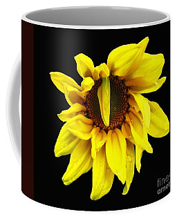 Coffee Mug featuring the photograph Droops Sunflower With Oil Painting Effect by Rose Santuci-Sofranko