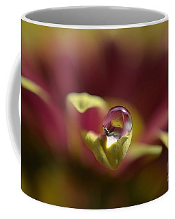 Drop On Petal Coffee Mug