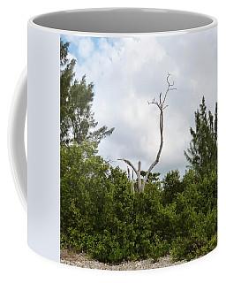 Coffee Mug featuring the photograph Druid Dance by Amar Sheow