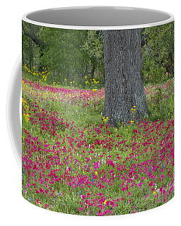 Drummonds Phlox And Crown Tickweed Central Texas Coffee Mug