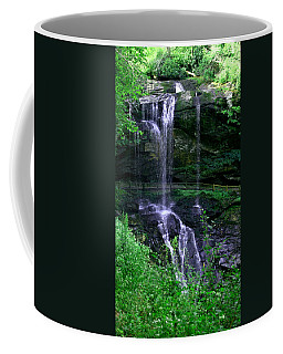 Dry Falls Coffee Mug by Cathy Harper