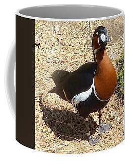 Duck Brown White Black Coffee Mug