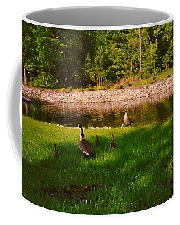 Duck Family Getting Back From Pond Coffee Mug