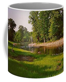 Duck Pond With Water Fountain Coffee Mug by Amazing Photographs AKA Christian Wilson