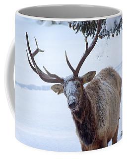 Dumped On Coffee Mug