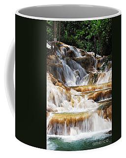 Dunn Falls Coffee Mug