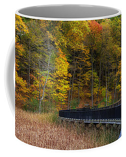 Durand Eastman Park Coffee Mug