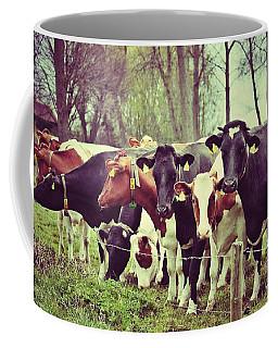 Coffee Mug featuring the photograph Dutch Cows by Nick  Biemans