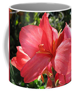 Coffee Mug featuring the photograph Dwarf Canna Lily Named Shining Pink by J McCombie