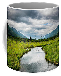 Eagle River Nature Center Coffee Mug by Andrew Matwijec