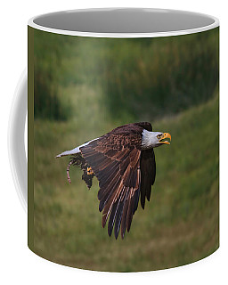 Coffee Mug featuring the photograph Eagle With Prey by Beth Sargent