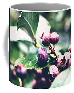 Coffee Mug featuring the photograph Early Blueberries by Rachel Mirror