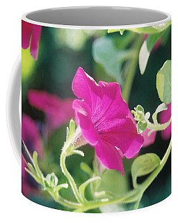 Early Morning Petunias Coffee Mug