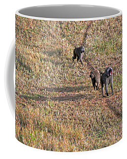 Early Morning Stroll Coffee Mug