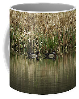 Early Morning Wood Ducks Coffee Mug