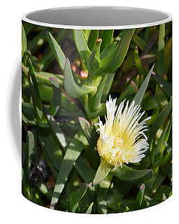 Coffee Mug featuring the photograph Earth Music by Laurie Lundquist