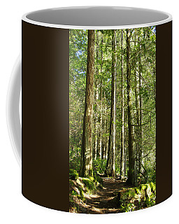 East Sooke Park Trail Coffee Mug