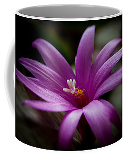 Easter Rose Coffee Mug by Steven Milner