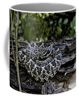 Eastern Diamondback-2 Coffee Mug