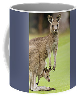 Eastern Grey Kangaroo With Joey Coffee Mug