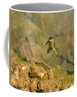 Eastern Newt In A Shallow Pool Of Water Coffee Mug