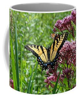 Eastern Tiger Swallowtail On Joe Pye Weed Coffee Mug