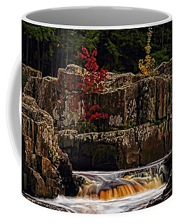 Waterfall Under Colored Leaves Coffee Mug