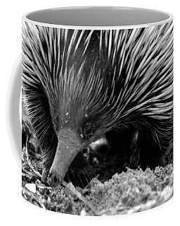 Echidna Coffee Mug by Miroslava Jurcik