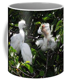 Egret Chicks Coffee Mug