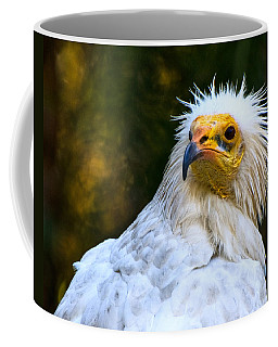 Egyptian Vulture Coffee Mug