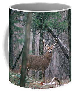 Eight Point Whitetail Deer Buck Coffee Mug