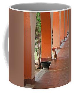 Coffee Mug featuring the photograph El Gato by Marcia Socolik