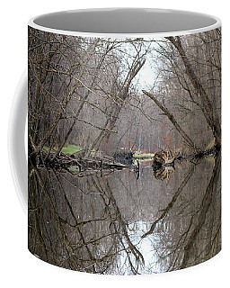 Eldon's Reflection Coffee Mug