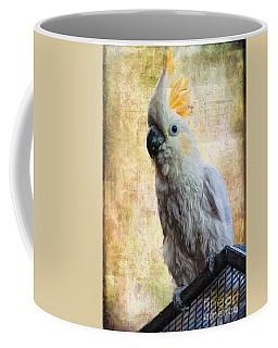 Elegant Lady Coffee Mug