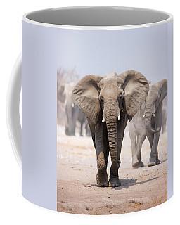 Elephant Bathing Coffee Mug