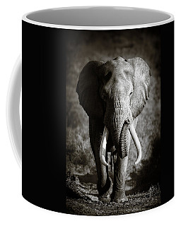 Elephant Bull Coffee Mug