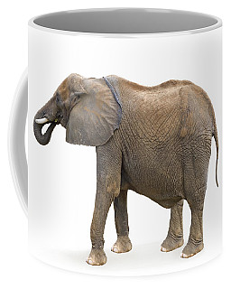 Coffee Mug featuring the photograph Elephant by Charles Beeler