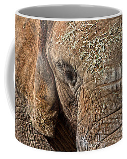 Elephant Never Forgets Coffee Mug by Miroslava Jurcik