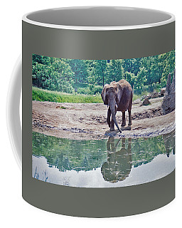 Elephant Three Coffee Mug
