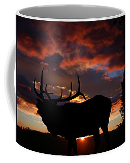 Elk At Sunset Coffee Mug