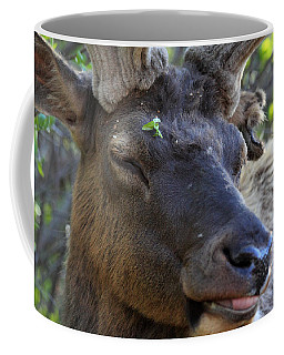 Elk Chuckle Coffee Mug