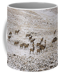 Coffee Mug featuring the photograph Elk In Snow Panorama 14x47 by J L Woody Wooden