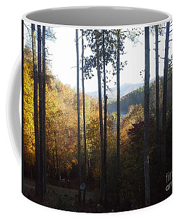 Coffee Mug featuring the painting Ellijay Color by Jan Dappen